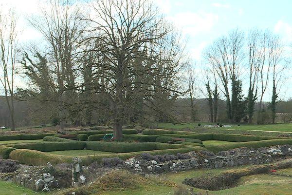 Tilleul planté au milieu du prieuré deMoreaucourt dans la Somme