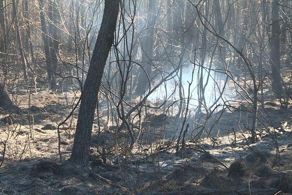 Les pompiers surveillent de près les fumerolles qui pourraient faire repartir l'incendie