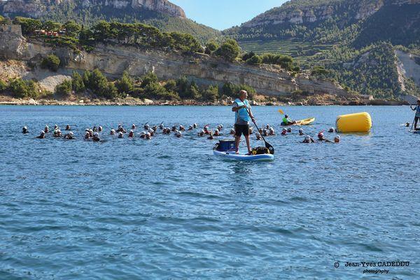 Les nageurs sur la ligne de départ lors de la précédente édition du MC swim challenge.