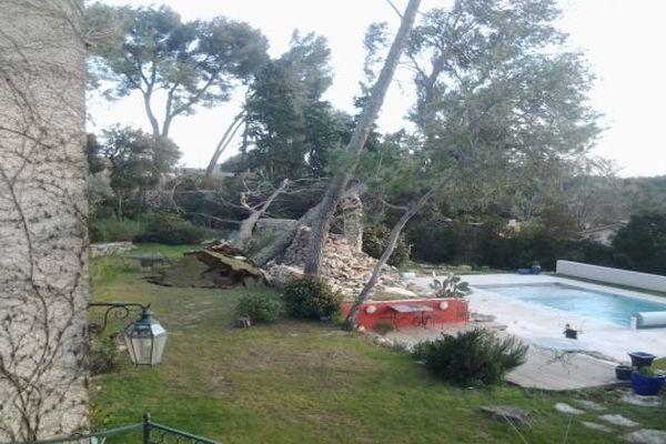 Un arbre couché par le vent dans une propriété du Gard