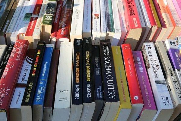 Le salon du livre d'hiver se tiendra dimanche 18 janvier à Montgiscard (Haute-Garonne)