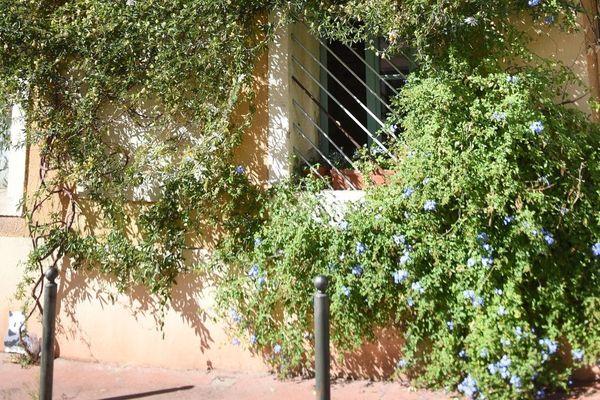 A Montpellier, les citoyens peuvent désormais fleurir leurs rues, et ce, grâce à un permis décerné par la ville.