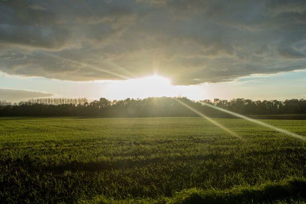 Le soleil à Serbonnes, près de Sens (Yonne).