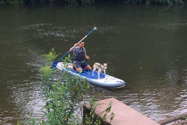 Balade au fil de l'eau en cani-paddle