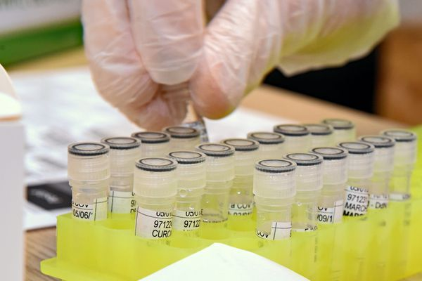 Tests PCR de dépistage Covid - archives.