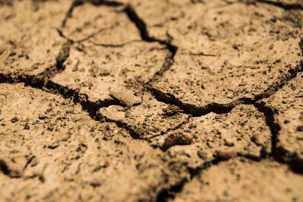 Pour éviter la secheresse il est crucial que les mois d'avril et de mai soient pluvieux