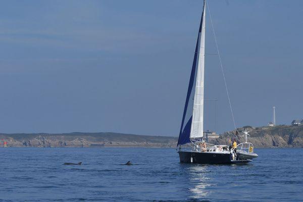 Cette application n'est pour l'instant disponible que dans la zone de navigation du Mont-Saint-Michel au Croisic