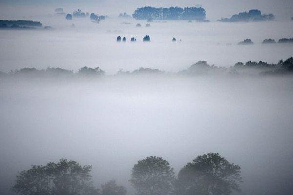 Dans l'Eure, le Marais Vernier baigné de brume...