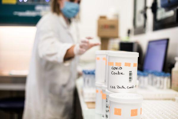 """Les échantillons prélevés peuvent être conservés 7 jours avant d'être """"techniqués"""