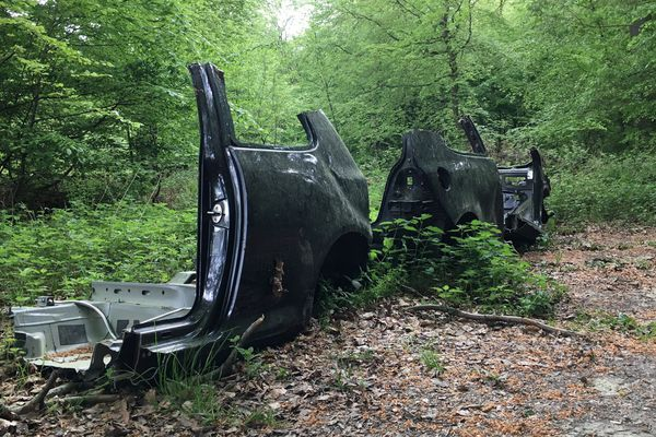 Carcasse au milieu d'une forêt au nord de Rouen (archives juin 2018)