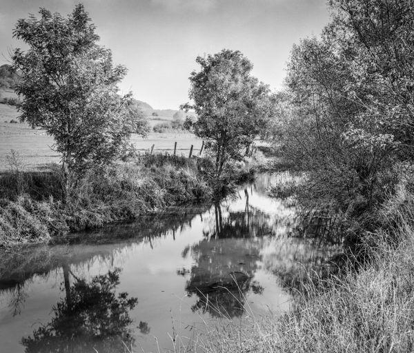 La Meuse près de Levécourt