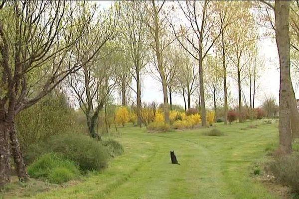 Arboretum de la Petite Loiterie à Monthodon (37)