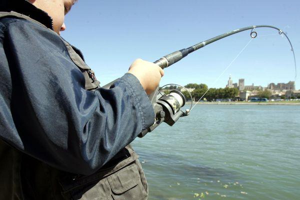 La pêche dans le Rhône est à nouveau autorisée