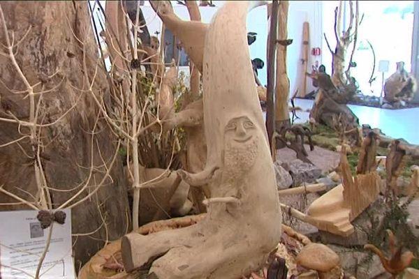 """""""Poupa"""" le sotré, mascotte du musée des mille et une racines."""