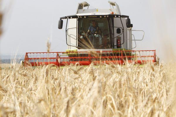 Le service de remplacement permet aux agriculteurs de s'absenter pour les vacances, tout en permettant la continuité de l'activité.