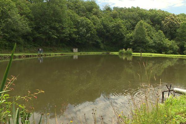 L'étang, un endroit paisible et ressourçant pour ce groupe de musique devenu vedette.