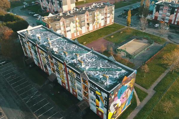 L'immeuble de la rue des tilleuls à Abbeville dans la Somme, qui doit être détruit prochainement, a été investi par 65 street artistes venus de France et d'Europe.