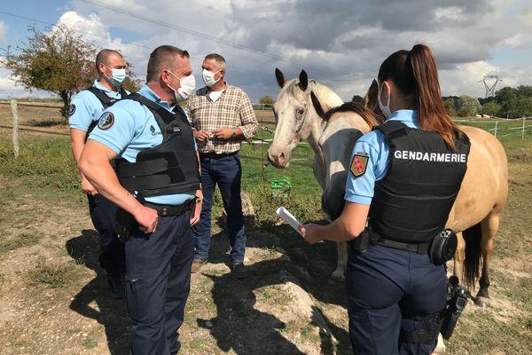 Les gendarmes de la brigade de Revigny-sur-Ornain (Meuse) rendent visite à un propriétaire de chevaux sur un ranch du canton le 23 septembre 2020.