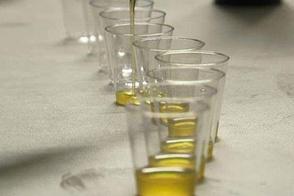 Invitation à la dégustation des huiles d'olive nouvelles - archives