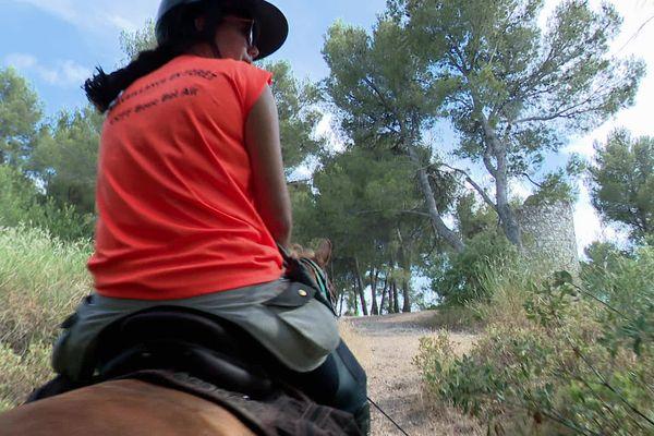 A cheval toute la journée en forêt : comment joindre l'utile à l'agréable