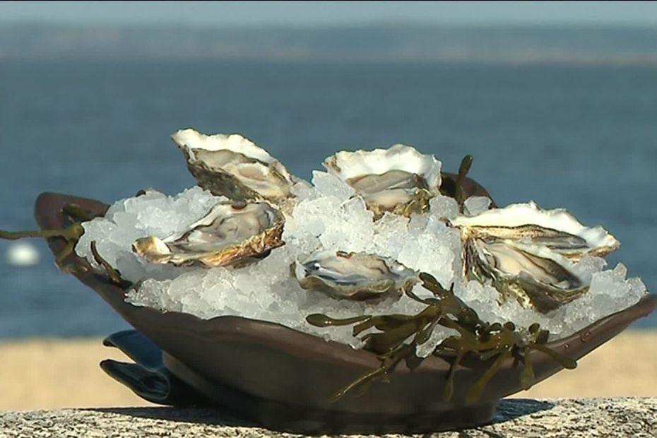 Bassin d'Arcachon : les ostréiculteurs comptent sur les fêtes pour se refaire une santé