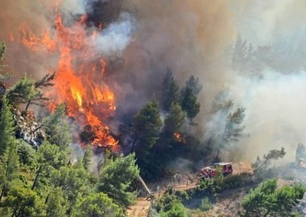 EN 2019, plus de 1000 hectares avaient brûlé dans le Gard.