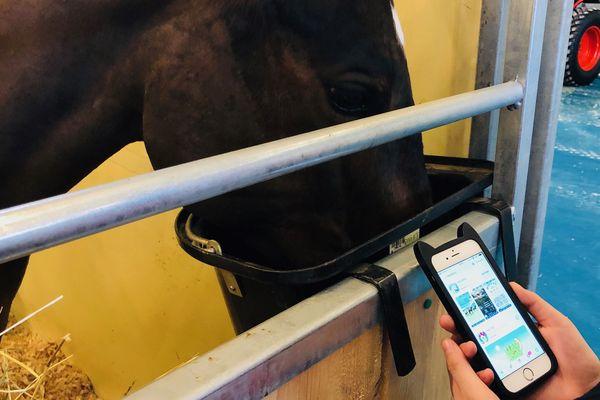 Le cheval il y a une appli- et plus d'une- pour ça