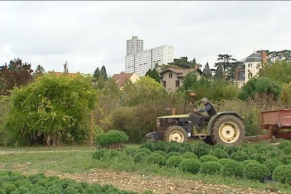 Une ferme en ville, à Ecully : la Ferme de l'Abbé Rozier