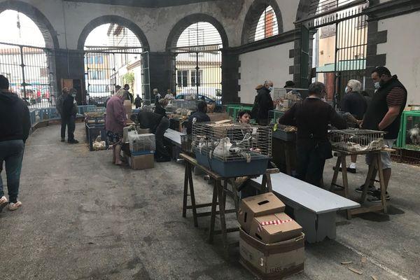 La halle aux volailles a fait la réputation du marché de Maringues, dans le Puy-de-Dôme.