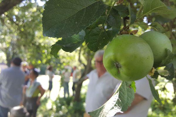 Réunion de producteurs de pommes et d'associations normandes inquiètent vis à vis du prosulfocarbe, le 16 septembre 2019 à Préaux-du-Perche dans l'Orne