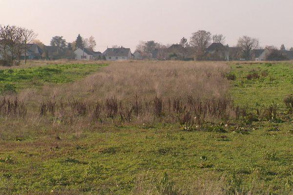 Zone de la Boitardière à Amboise (Indre-et-Loire)