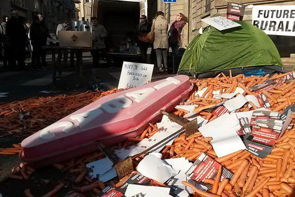 Toutes sortes de carottes ont été déposées devant la préfecture de la Haute-Vienne à Limoges.