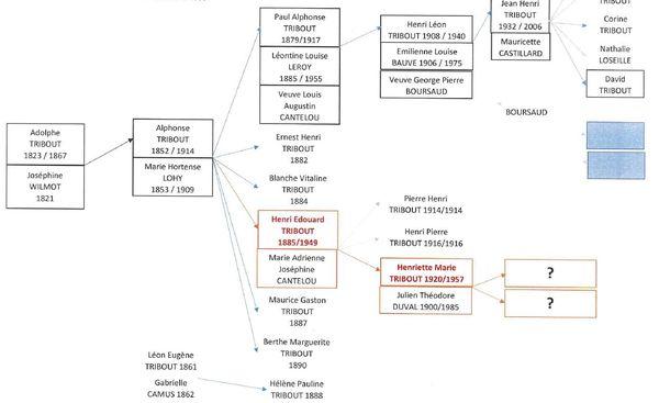 L'arbre généalogique de la famille Tribout