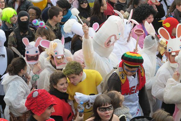 Des lapins dans le défilé