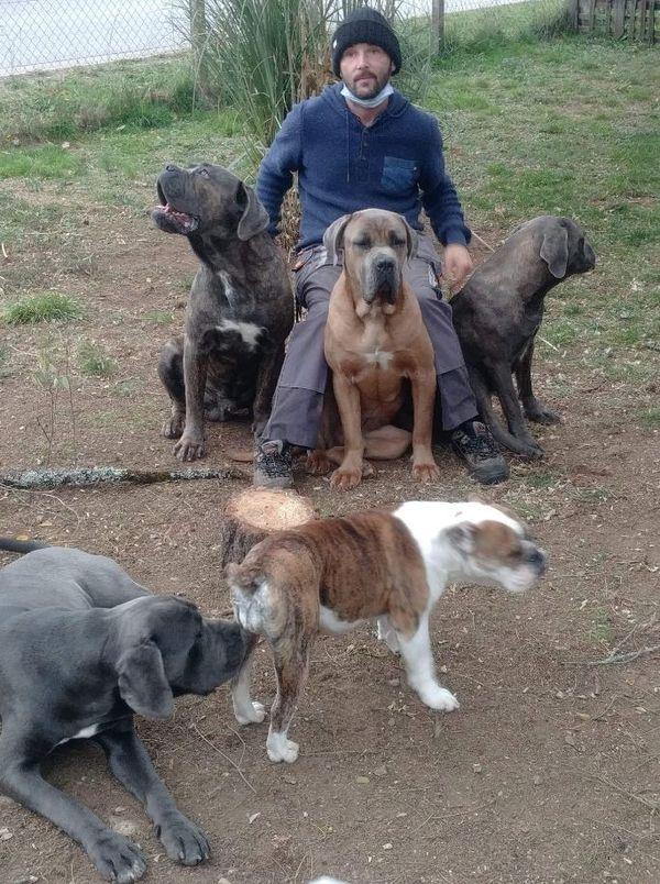 Alexandre Chauvet, le bénévole responsable du refuge animalier bortois avec les cané-corsos et le bulldog qui doivent être euthanasiés.