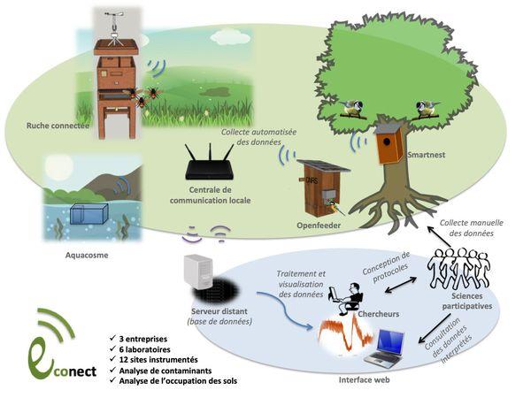 Le fonctionnement du projet Econect porté par 6 laboratoires de recherche et trois start-up toulousaines.
