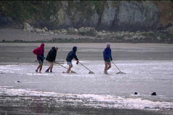 Des pêcheurs à pied lors d'une précédente grande marée (archives).