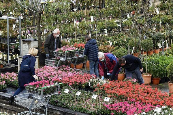 Depuis le début du déconfinement, les Français ont des envies de jardinage, notamment dans le Puy-de-Dôme et l'Allier.