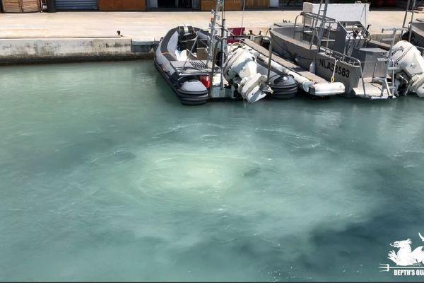 Des rejets suspects arrivant dans le bassin de la Tour Rouge, dans le port de Nice. C'est l'association Depth's Guards qui a alerté les services de la Métropole pour trouver l'origine de cette pollution.