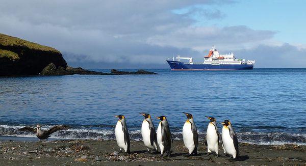 Le Marion Dufresne II au large de l'archipel Crozet.