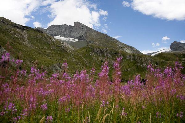 La vallée d'Averole dans le Parc national de la Vanoise en Savoie. (Illustration)