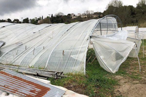 Des serres impactées par les fortes rafales de vent dans le quartier des Plans de Villeneuve-Loubet :