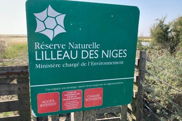La réserve naturelle de Lilleau des Niges sur l'île de Ré