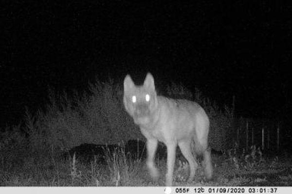 Une zone difficilement protégeable permettrait aux éleveurs de se défendre plus facilement contre les loups.