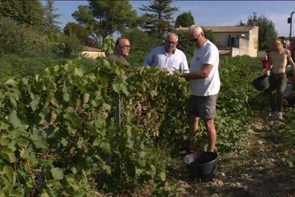 """80 vignerons de Châteauneuf-du-Pape participent à la """"Cuvée des hospices"""""""