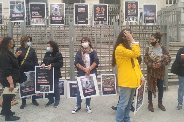 Devant le Palais de Justice de Nice, rassemblement a l appel de l association Asa06 qui réclame la saisie des animaux qui sont toujours au refuge de Revest-les-Roches.