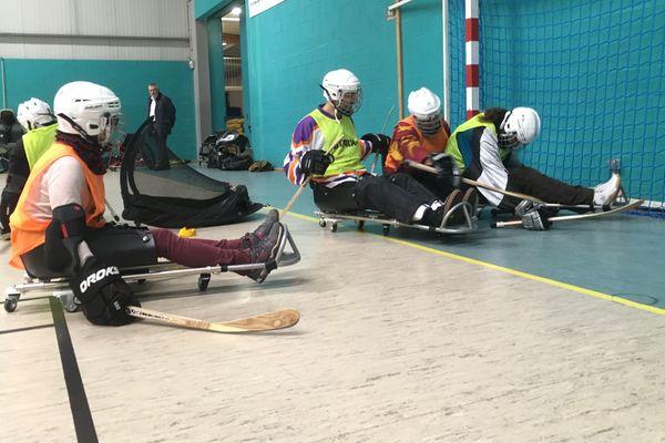 Selon les adhérents de Blois Handisport, le hockey-luge est addictif.