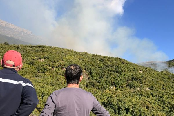 Le feu sur les hauteurs de Patrimonio est inaccessible pour les pompiers, qui ne disposent actuellement que de moyens terrestres.
