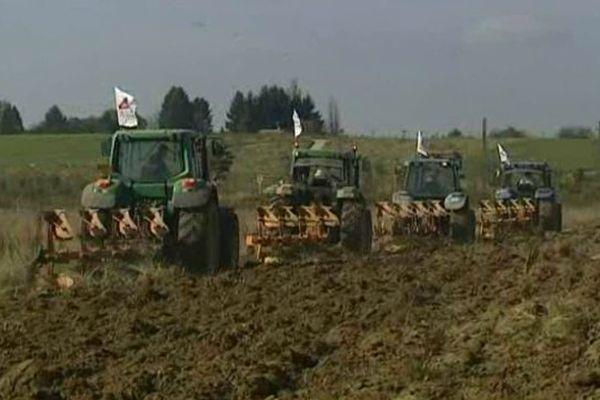 C'est la deuxième fois qu'ils laboure ce champs.