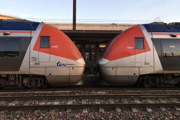 Des TER (trains express régionaux)